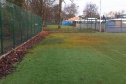 Moss & Leaves On Sports Pitch